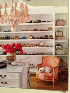 walk-in closet with shoes on bookshelves