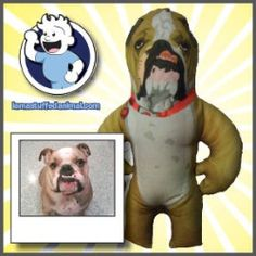Custom Stuffed Animal for The Pet Lover  $99.00