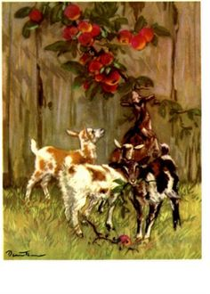 Baby Goat Kids in Summer Flowers Print Little by NoCrybabyDoGs  #goatvet