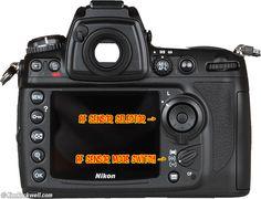 Nikon D300 Rear AF Selectors