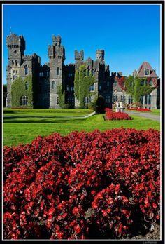 ireland irelandirelandireland, dream, medieval castles, place, ashford castle ireland