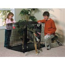 "Life Stages Fold & Carry Double-Door Dog Crate Size: X-Large - 48"" L x 30"" W x 33"" H"