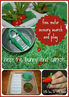 bunny carrot sensory search and fine motor play activity