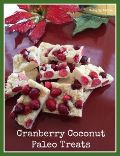 Cranberry Coconut Paleo Treats (Grain Free, Dairy Free, Nut Free, Egg Free) - Gutsy By Nature
