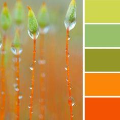Modern interior colors, orange color schemes Light green and orange color scheme. Me gusta mucho. Es el que más me ha gustado.