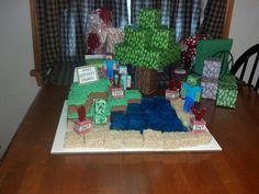 Minecraft birthday cake!