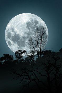 La luna de sorrento by George Veltchev