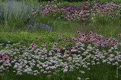 cityscapes, garden project, millennium park, luri garden, architecture, garden time, garden stuff, chicago architectur, garden fun