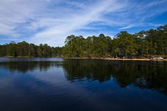 Bastrop SP by zhongchun, via Flickr