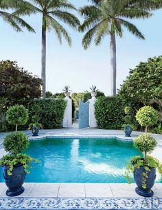 Poolside palms.