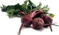 beets - baby food recipes