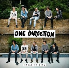 One Direction Announces Steal My Girl Single