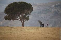 View toward Wadi Naar - West Bank