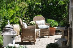 Our courtyard garden. A green hedge creates the boundaries of this outdoor room.