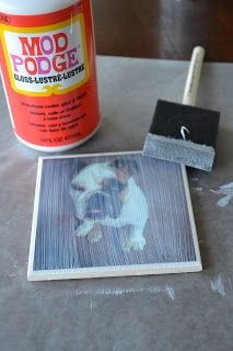 Photo coasters for Christmas gifts