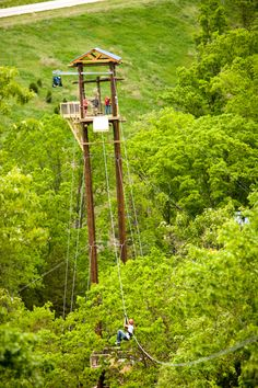 BEST Zipline anywhere!