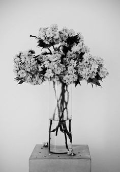 . heart glow, dark beauty, black white, black and white still life, white bouquets, life photography, flower displays, cherry blossoms, white flowers tumblr