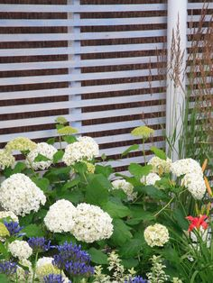 Contemporary Slatted Wood Fence