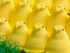 10 Weird Things You Never Knew Came in Peeps Form
