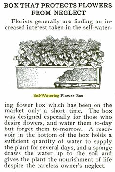 A 100+ Year Old Commercially Available Sub-irrigated Planter (SIP), Inside Urban Green. Lovely illustration makes me want to try growing a window box like this.