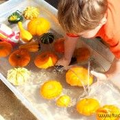 Fishing For Pumpkins…and Exciting  - Pinned by @PediaStaff – Please Visit  ht.ly/63sNt for all our pediatric therapy pins