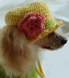 #crochet pet hat pattern for sale