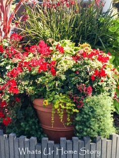 How to make the perfect container garden www.whatsurhomestory.com