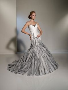 Black And Silver Wedding Dresses | Photo Gallery - Photo of Silver & White Wedding Gown