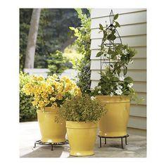 yellow planter