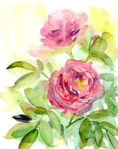 loose watercolor roses