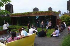 dub studio, roof deck, sod roof, roofs, soho roof, rooftop deck