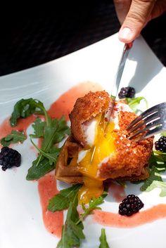 Jam Restaurant 3057 WEST LOGAN BLVD CHICAGO, IL 60647 OPEN DAILY 7AM - 3PM (773) 292-6011