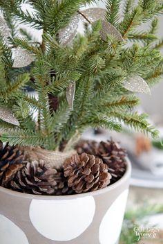 Miniature Evergreen Christmas Centerpiece