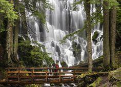 Losing yourself in nature's great wonders. Ramona Falls Mount Hood, Oregon