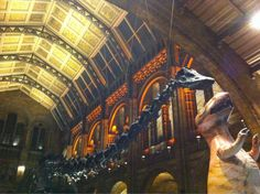 Twitter / naomiburgoyne: Loved @NHM_London science ...