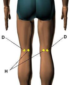 Acupressure Points for Relieving Knee Pain