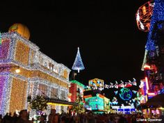 Love this pic from Undercover Tourist - @Undercover Tourist! I'm thankful for our recent adult only trip to see the Osborne lights!!