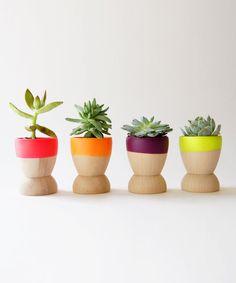 Sun Dipped Mini Planters - how adorable!!
