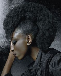 Google Image Result for http://www.ehairstyleshaircuts.com/wp-content/uploads/2012/01/natural-hairstyles-for-black-women-2012-000.jpg
