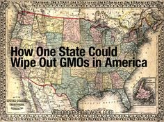 How One State Could Wipe Out GMOs in America - Vermont has become the first state to pass a bill requiring that GMOs (genetically modified organisms) be labeled in the grocery store. Gov. Peter Shumlin said he plans to sign the bill.