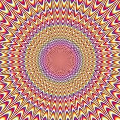 Brain Teasers Optical Illusions on The Best W Is For Worm Ideas On Pinterest