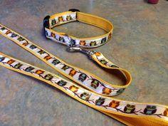 DIY dog collar and leash.