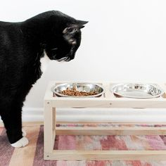 wanna get your pets bowls off the floor? it'll be way less gross! make this modern stand for your cats or dogs and everyone will be happy!