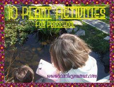 10 plant activities for preschool