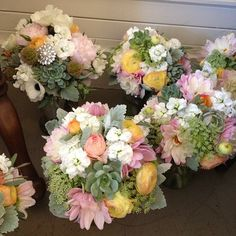 Wedding bouquets!!!!!  #wedding #weddingbouquets #succulentbouquet #succulents #diywedding http://www.russwholesaleflowers.com/wholesale-succulent-sale  RusswholesaleFlowers.com offers the best wholesale succulent prices available to the public online.  wholesale succulents for bouquets, special events, wreaths, diy and more.  3 different sizes to meet your needs.