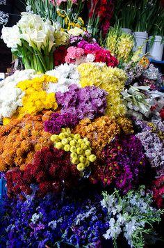 At the flower market Peru