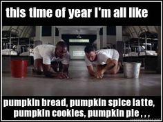 Meme Maker - this time of year I'm all like pumpkin bread, pumpkin spice latte, pumpkin cooki