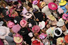 A sea of hats at Kentucky Oaks day!