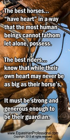 """The best horses""""have heart"""" in a way  that the most human beings cannot fathom  let alone, possess.  http://www.equestrianprofessional.com"""
