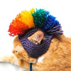 Hey, I found this really awesome Etsy listing at https://www.etsy.com/listing/76814111/mohawk-cat-hat-purple-rainbow-hand-knit